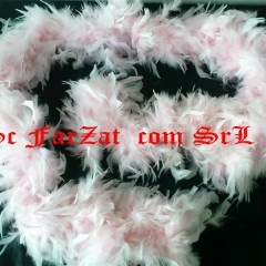 fular cu pene roz (2)