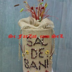 sac de bani (4) (medium)