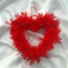 inimioare din pene (1)