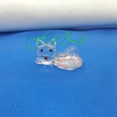 marturie pisica (2)