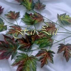 flori cod 19 poze brute (1)